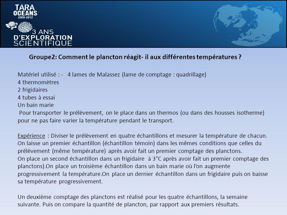 Groupe2: Comment le plancton réagit- il aux différentes températures