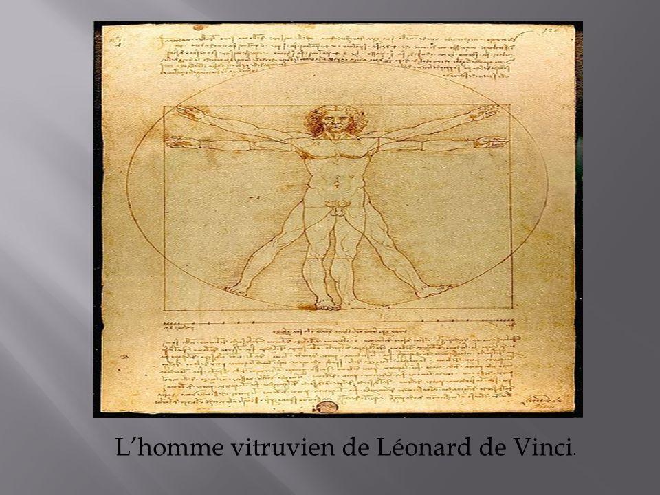 L'homme vitruvien de Léonard de Vinci.