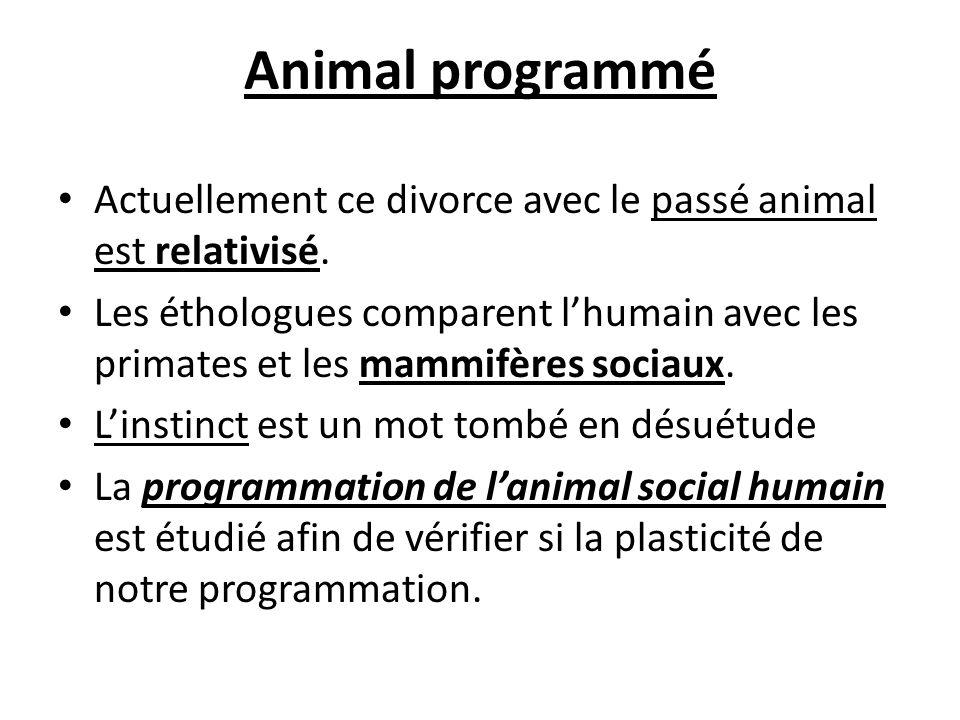 Animal programmé Actuellement ce divorce avec le passé animal est relativisé.