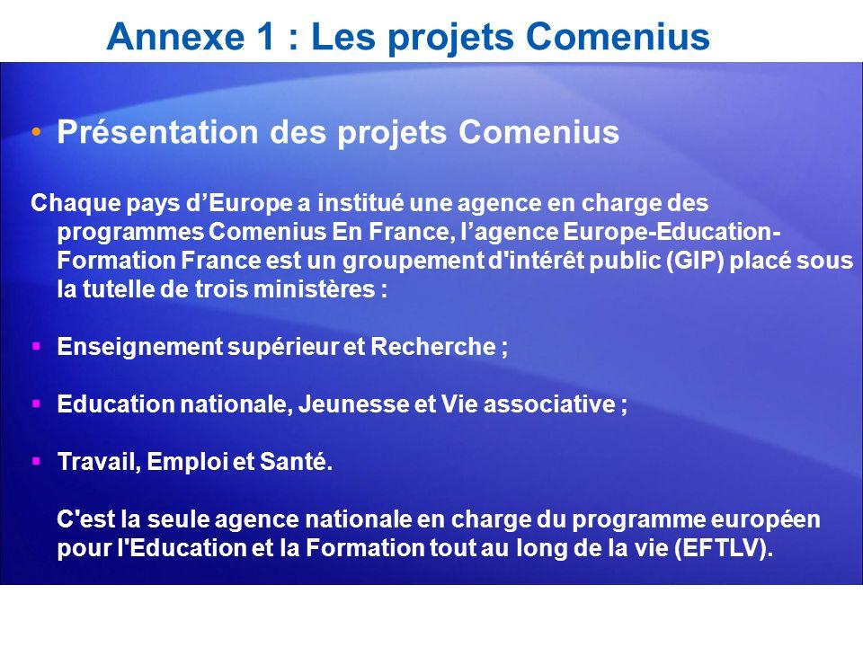 Annexe 1 : Les projets Comenius