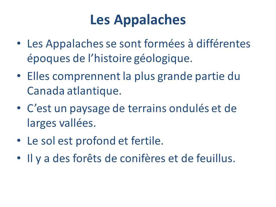 Les Appalaches Les Appalaches se sont formées à différentes époques de l'histoire géologique.
