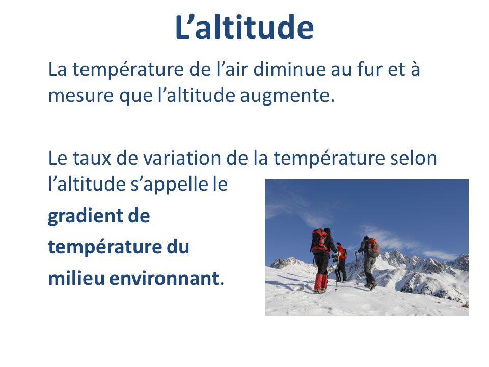 L'altitude