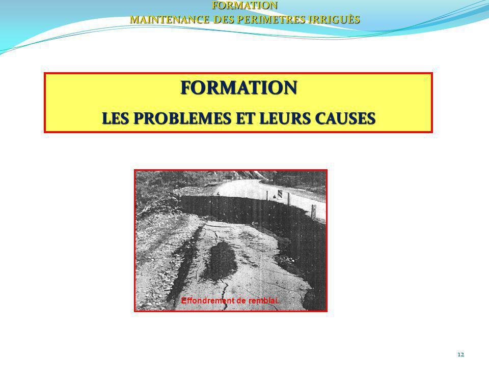 FORMATION LES PROBLEMES ET LEURS CAUSES FORMATION