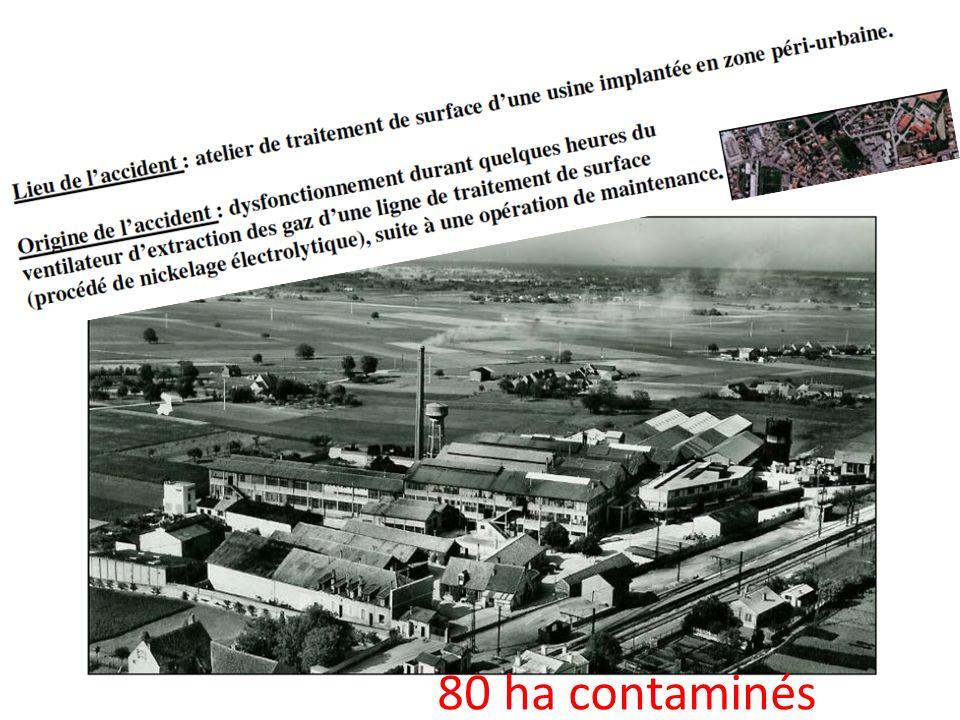 80 ha contaminés