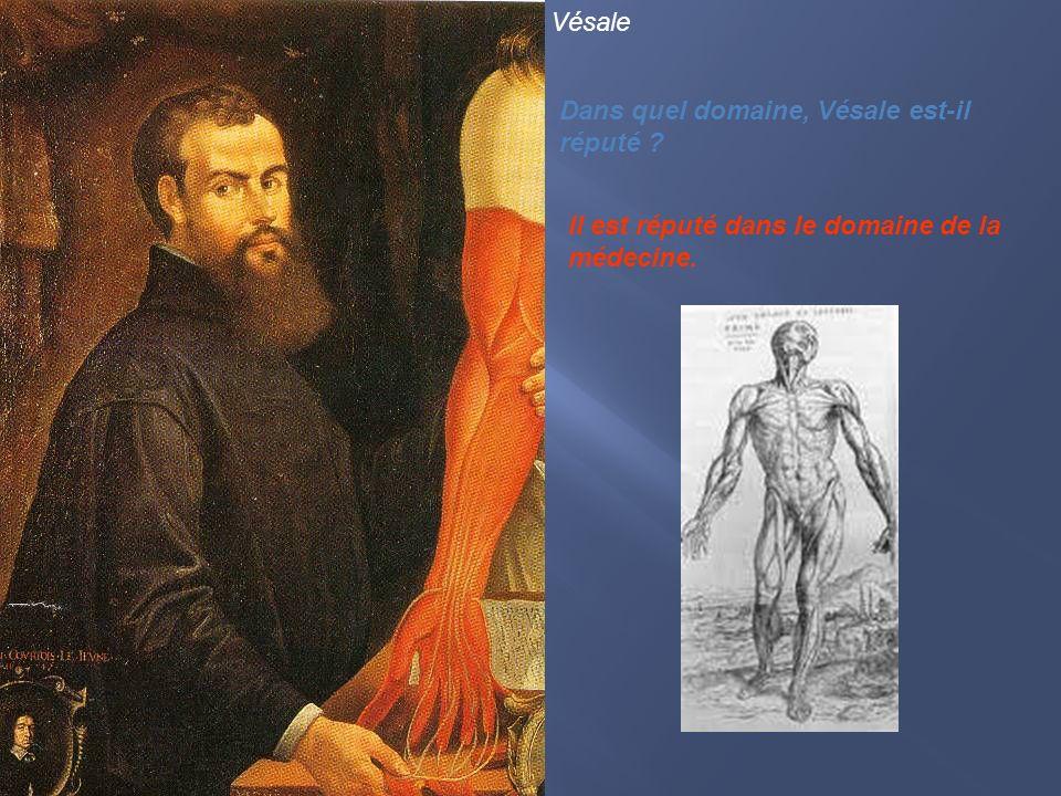 Vésale Dans quel domaine, Vésale est-il réputé Il est réputé dans le domaine de la médecine.