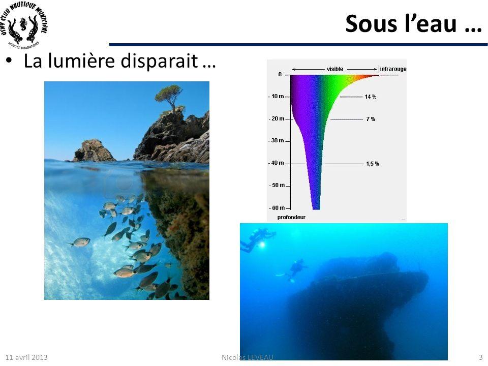 Sous l'eau … La lumière disparait … 11 avril 2013 Nicolas LEVEAU