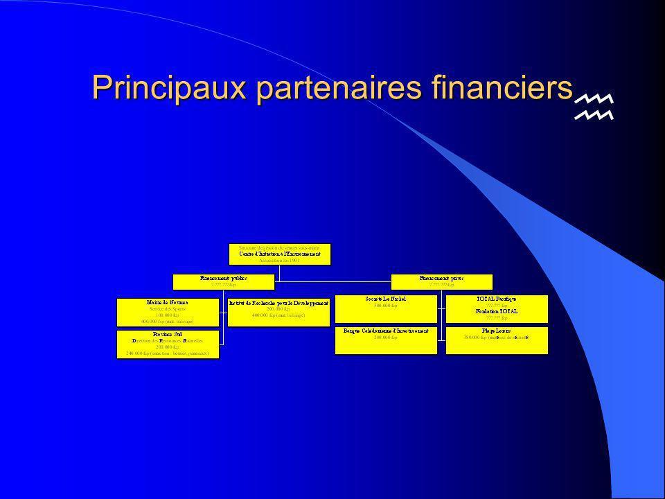Principaux partenaires financiers