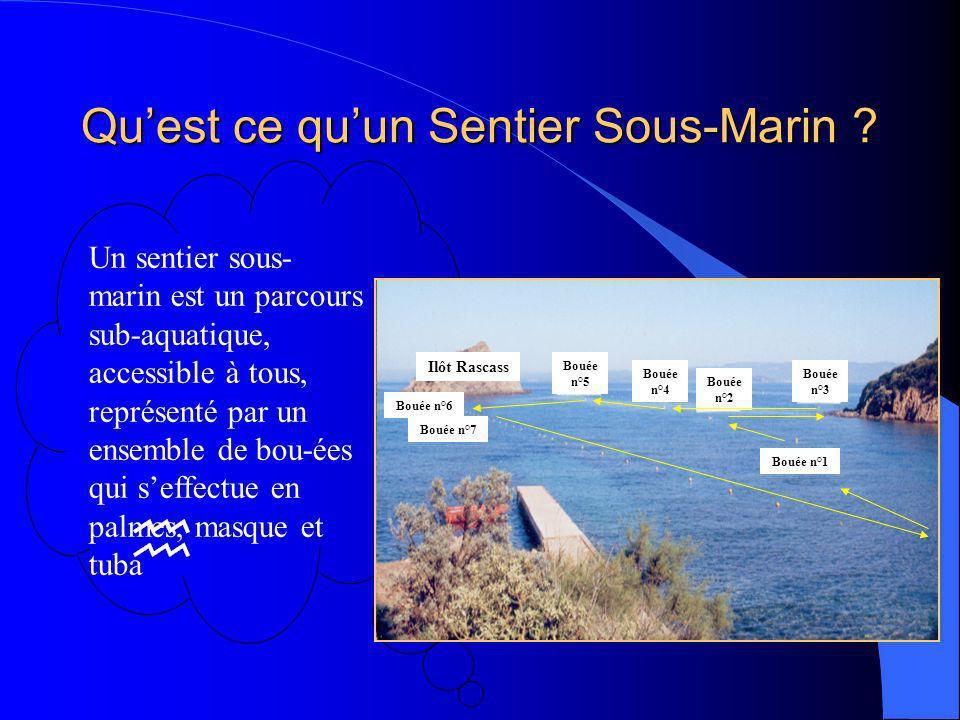 Qu'est ce qu'un Sentier Sous-Marin