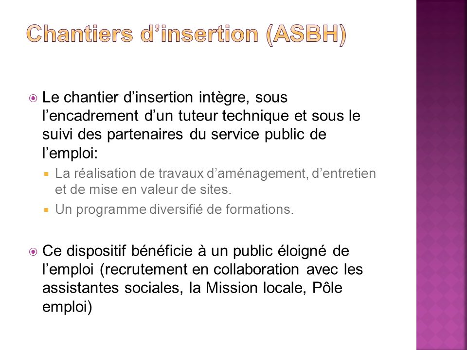 Chantiers d'insertion (asbh)