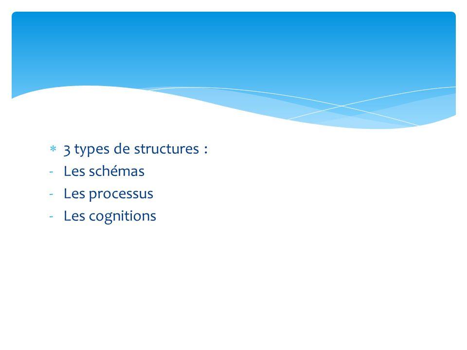 3 types de structures : Les schémas Les processus Les cognitions