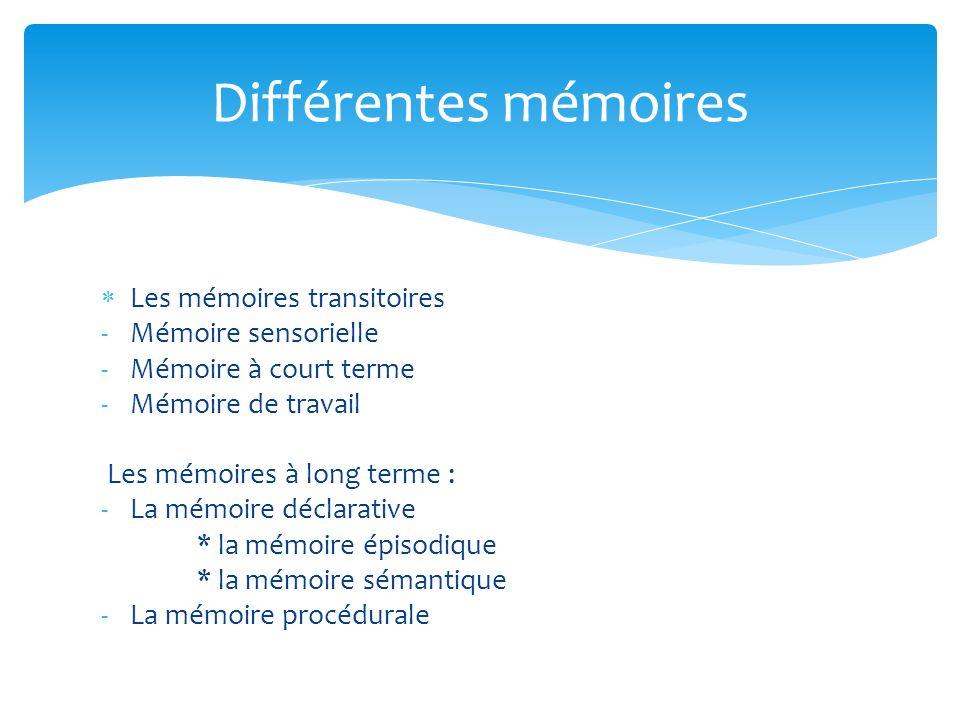 Différentes mémoires Les mémoires transitoires Mémoire sensorielle