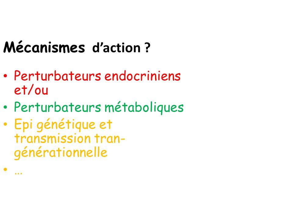 Mécanismes d'action Perturbateurs endocriniens et/ou