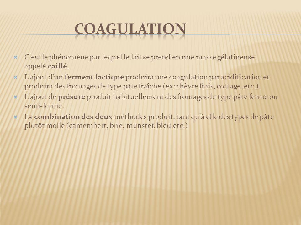 coagulation C est le phénomène par lequel le lait se prend en une masse gélatineuse appelé caillé.