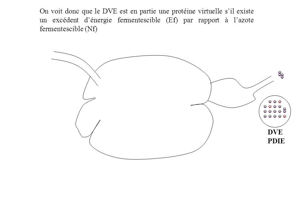 On voit donc que le DVE est en partie une protéine virtuelle s'il existe un excédent d'énergie fermentescible (Ef) par rapport à l'azote fermentescible (Nf)