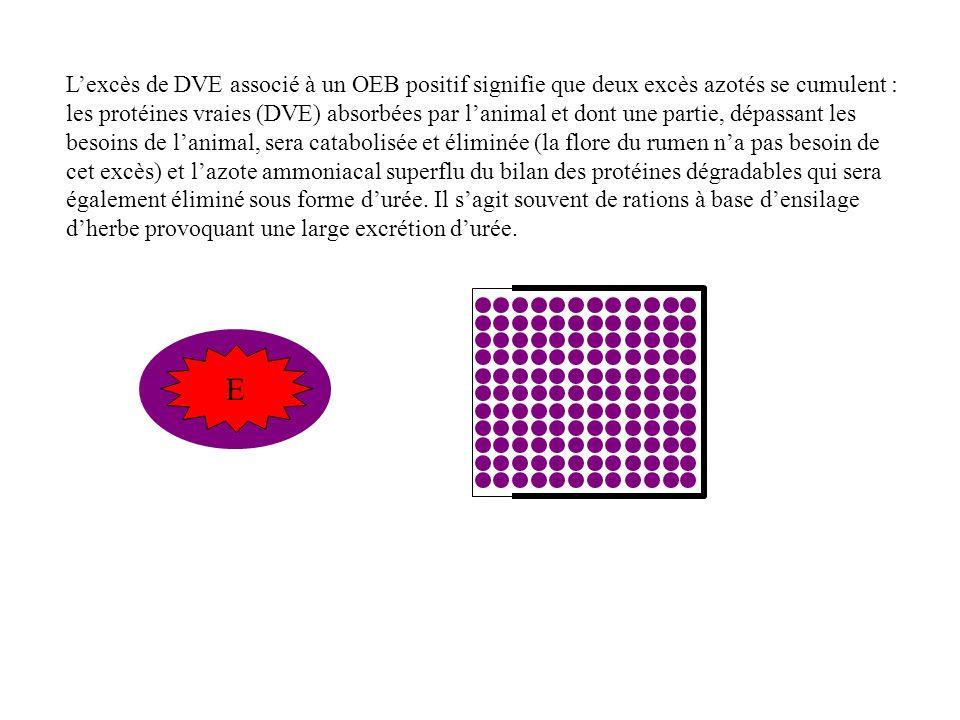 L'excès de DVE associé à un OEB positif signifie que deux excès azotés se cumulent : les protéines vraies (DVE) absorbées par l'animal et dont une partie, dépassant les besoins de l'animal, sera catabolisée et éliminée (la flore du rumen n'a pas besoin de cet excès) et l'azote ammoniacal superflu du bilan des protéines dégradables qui sera également éliminé sous forme d'urée. Il s'agit souvent de rations à base d'ensilage d'herbe provoquant une large excrétion d'urée.