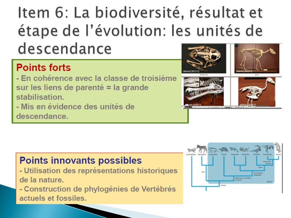 Item 6: La biodiversité, résultat et étape de l'évolution: les unités de descendance