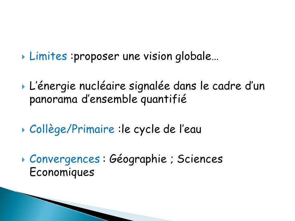Limites :proposer une vision globale…