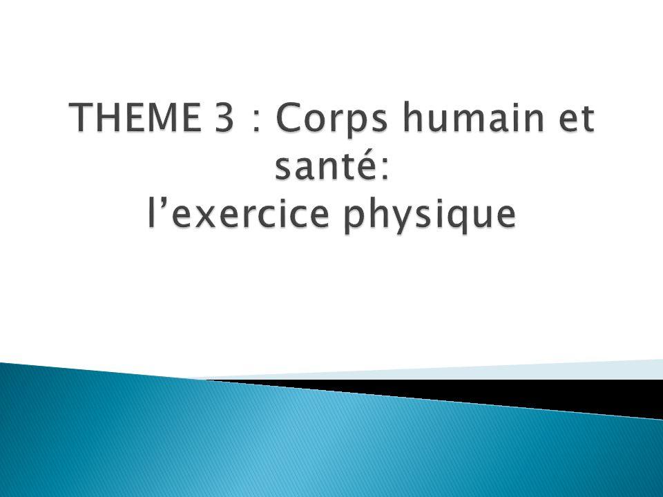 THEME 3 : Corps humain et santé: l'exercice physique