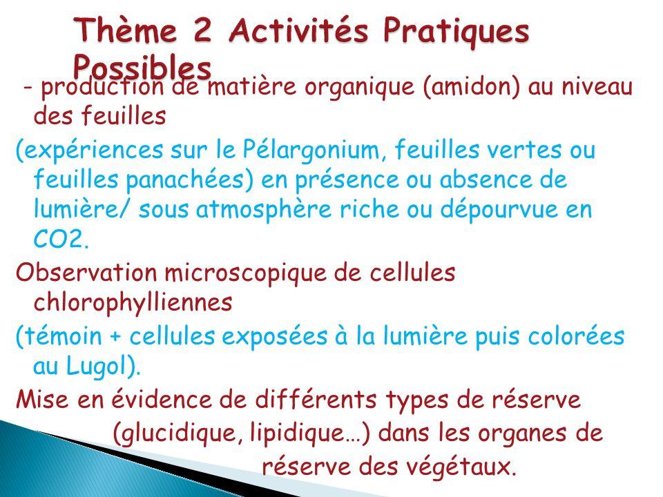 Thème 2 Activités Pratiques Possibles