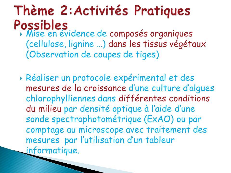 Thème 2:Activités Pratiques Possibles