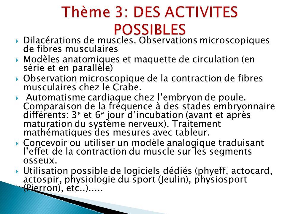 Thème 3: DES ACTIVITES POSSIBLES