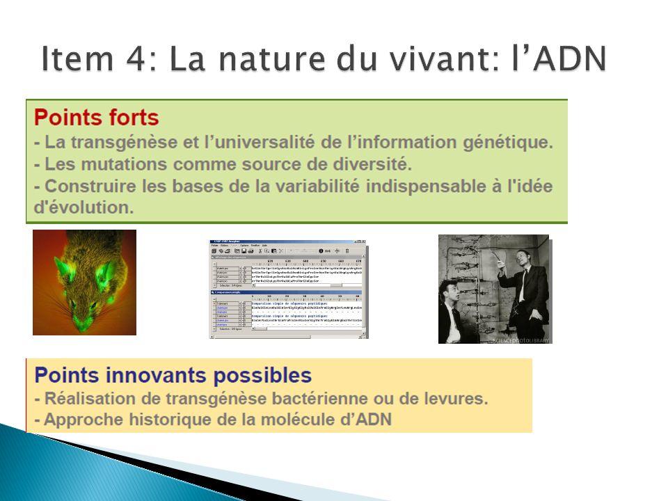 Item 4: La nature du vivant: l'ADN