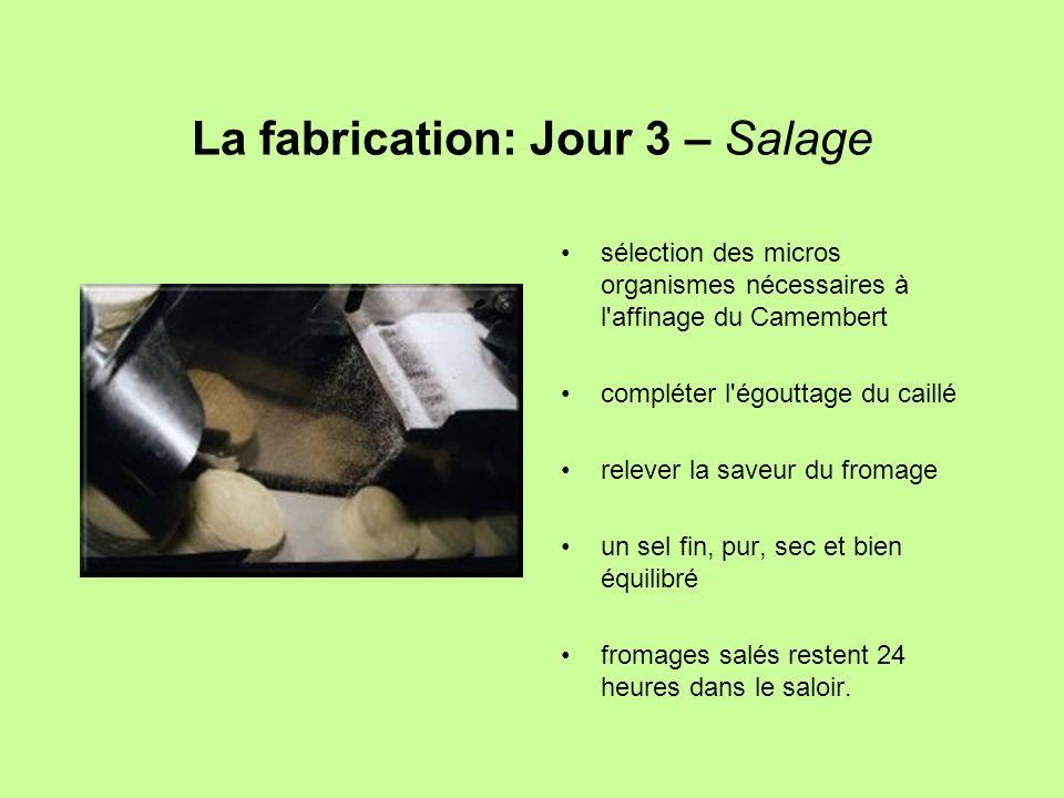 La fabrication: Jour 3 – Salage