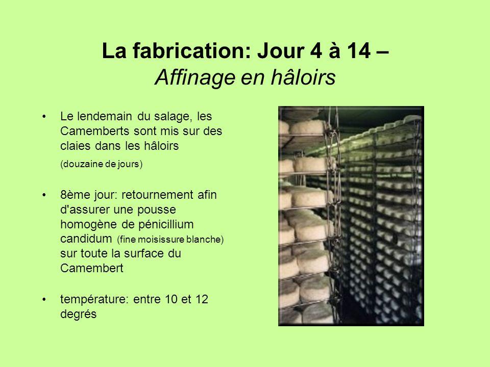 La fabrication: Jour 4 à 14 – Affinage en hâloirs