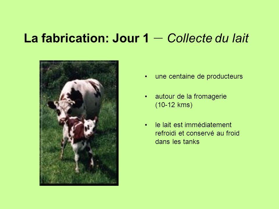 La fabrication: Jour 1 – Collecte du lait