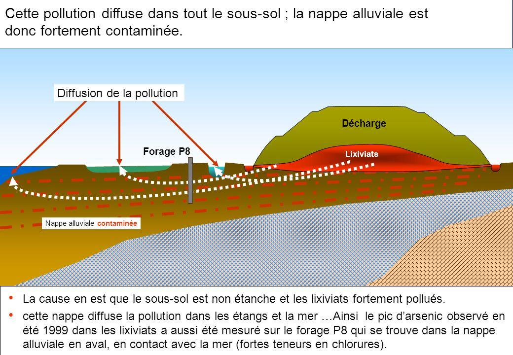 Cette pollution diffuse dans tout le sous-sol ; la nappe alluviale est donc fortement contaminée.