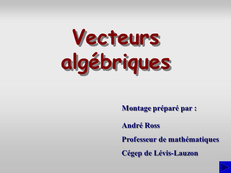Vecteurs algébriques Montage préparé par : André Ross