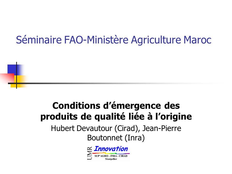 Séminaire FAO-Ministère Agriculture Maroc