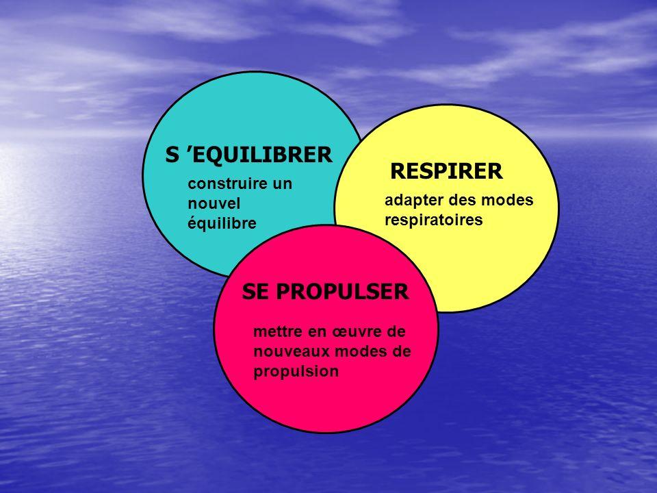 S 'EQUILIBRER RESPIRER SE PROPULSER construire un nouvel équilibre