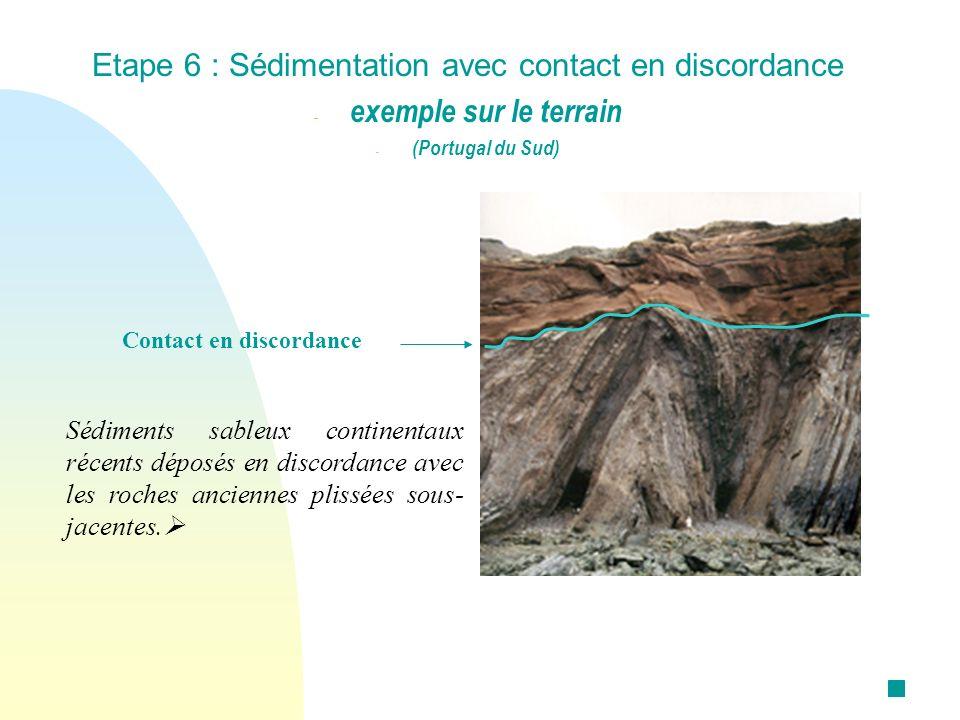 Etape 6 : Sédimentation avec contact en discordance