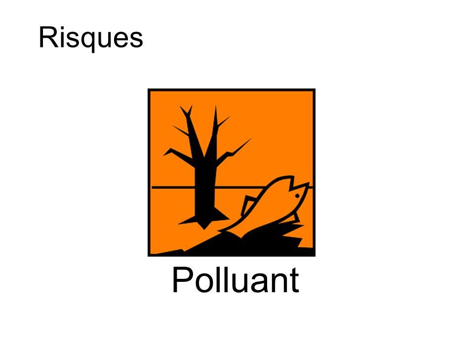 Risques Polluant