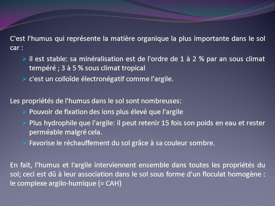 C est l humus qui représente la matière organique la plus importante dans le sol car :