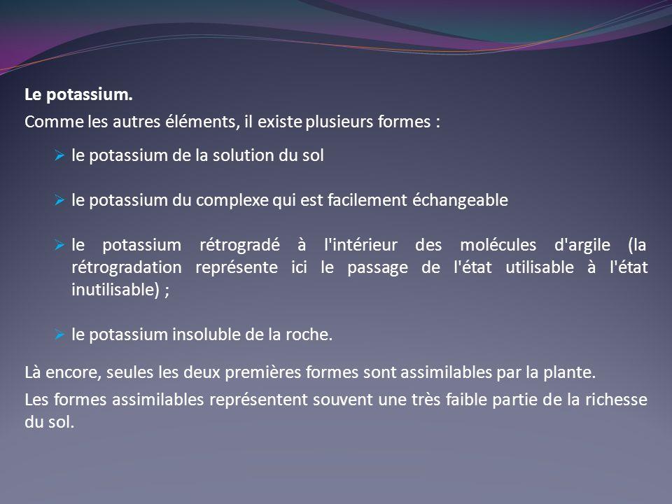 Le potassium. Comme les autres éléments, il existe plusieurs formes : le potassium de la solution du sol.