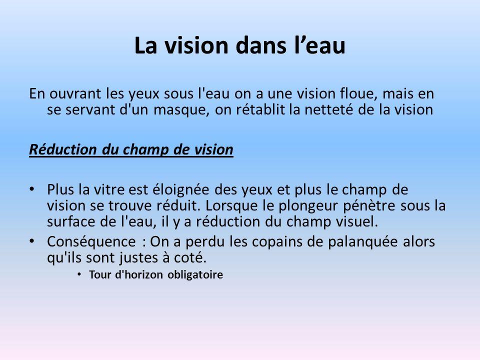 La vision dans l'eau En ouvrant les yeux sous l eau on a une vision floue, mais en se servant d un masque, on rétablit la netteté de la vision.