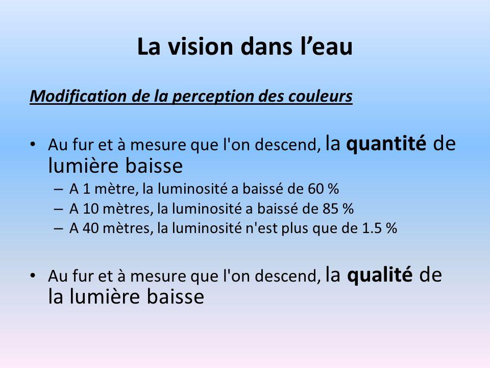 La vision dans l'eau Modification de la perception des couleurs