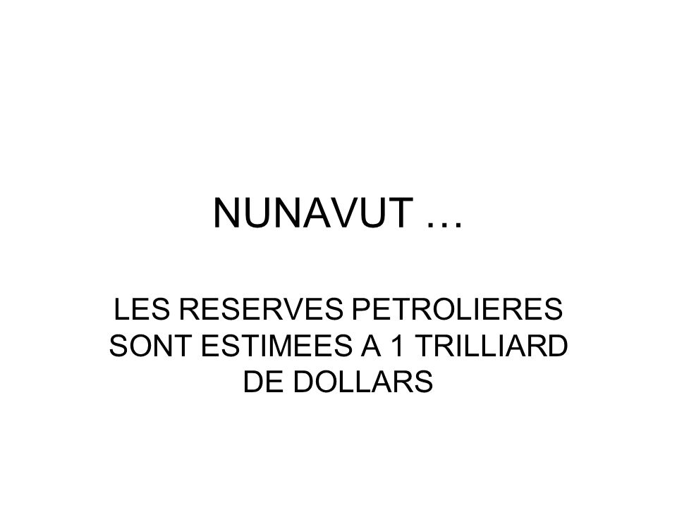 LES RESERVES PETROLIERES SONT ESTIMEES A 1 TRILLIARD DE DOLLARS