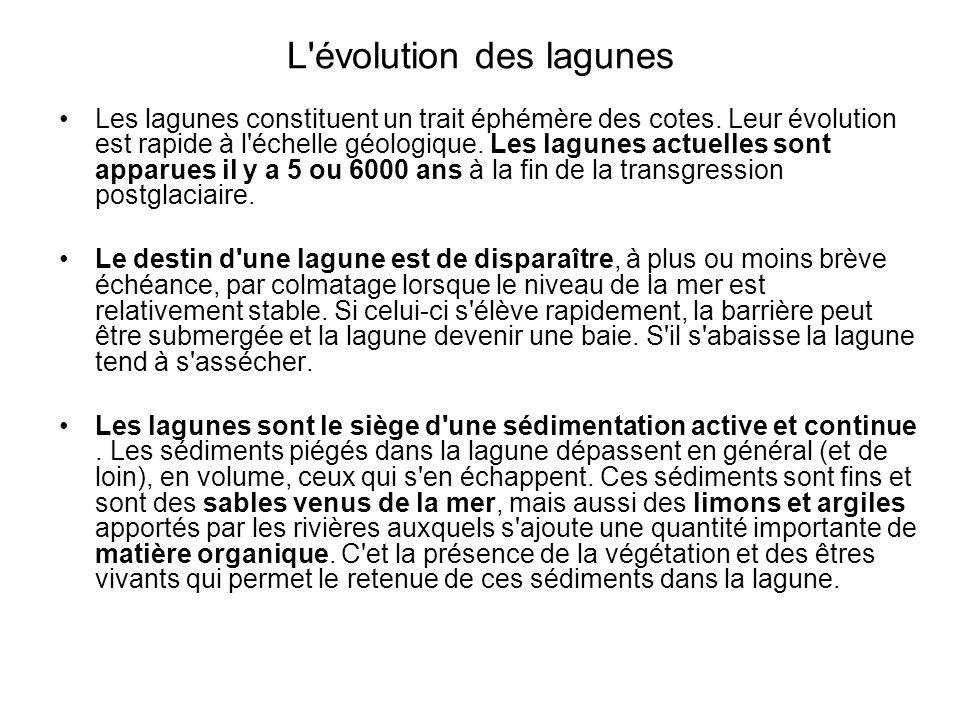L évolution des lagunes