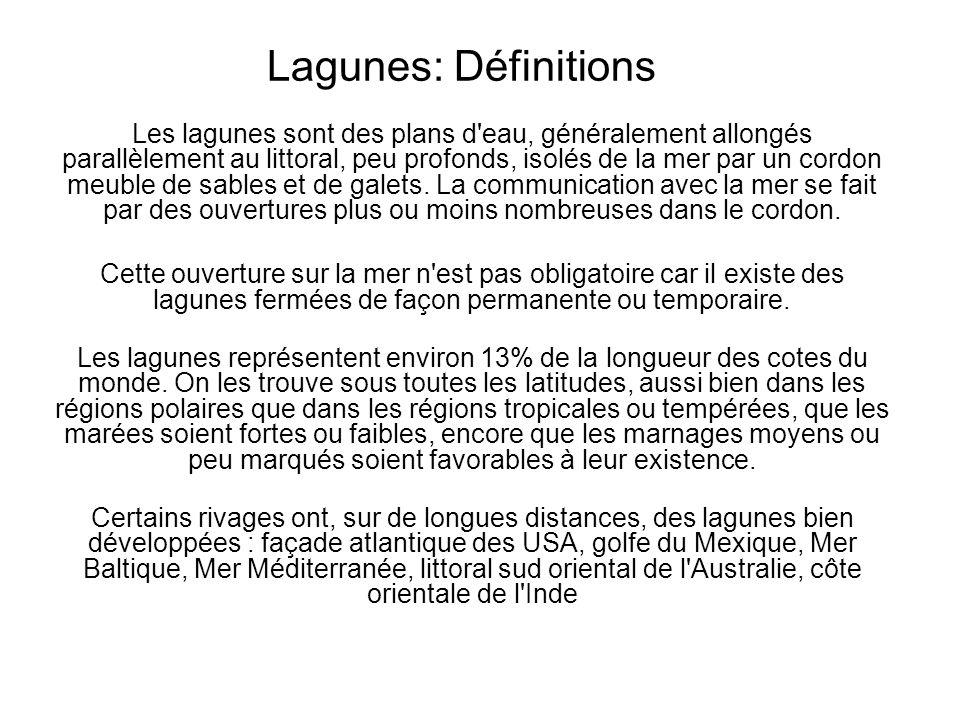 Lagunes: Définitions