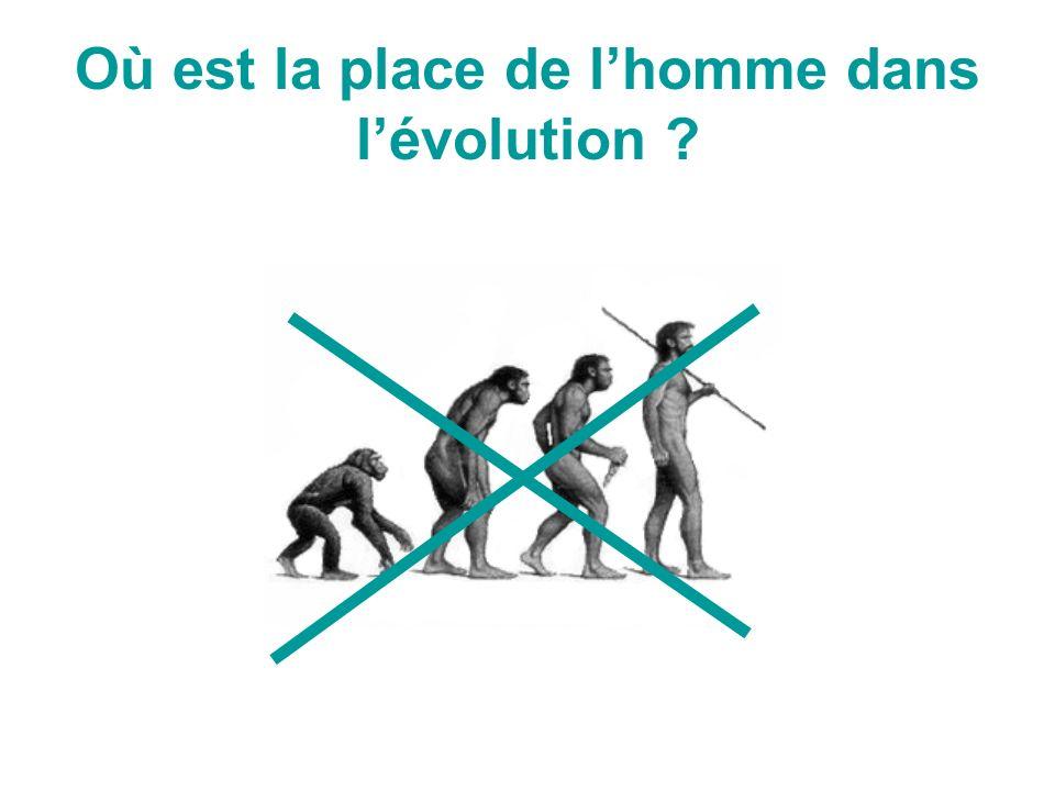 Où est la place de l'homme dans l'évolution