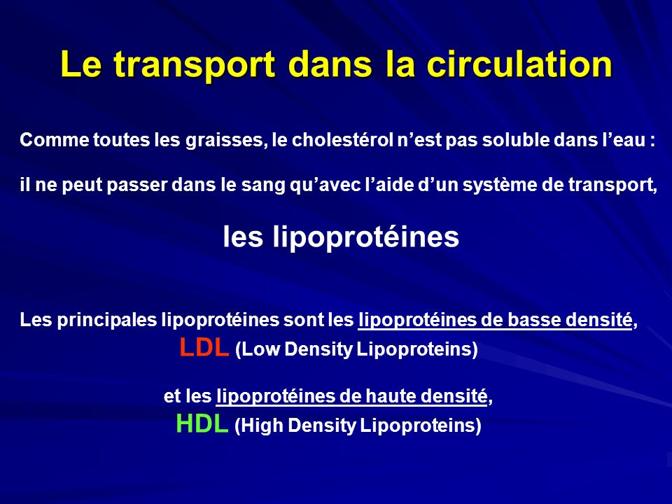Le transport dans la circulation