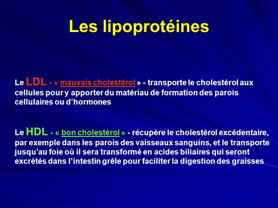 Les lipoprotéines Le LDL - « mauvais cholestérol » - transporte le cholestérol aux. cellules pour y apporter du matériau de formation des parois.