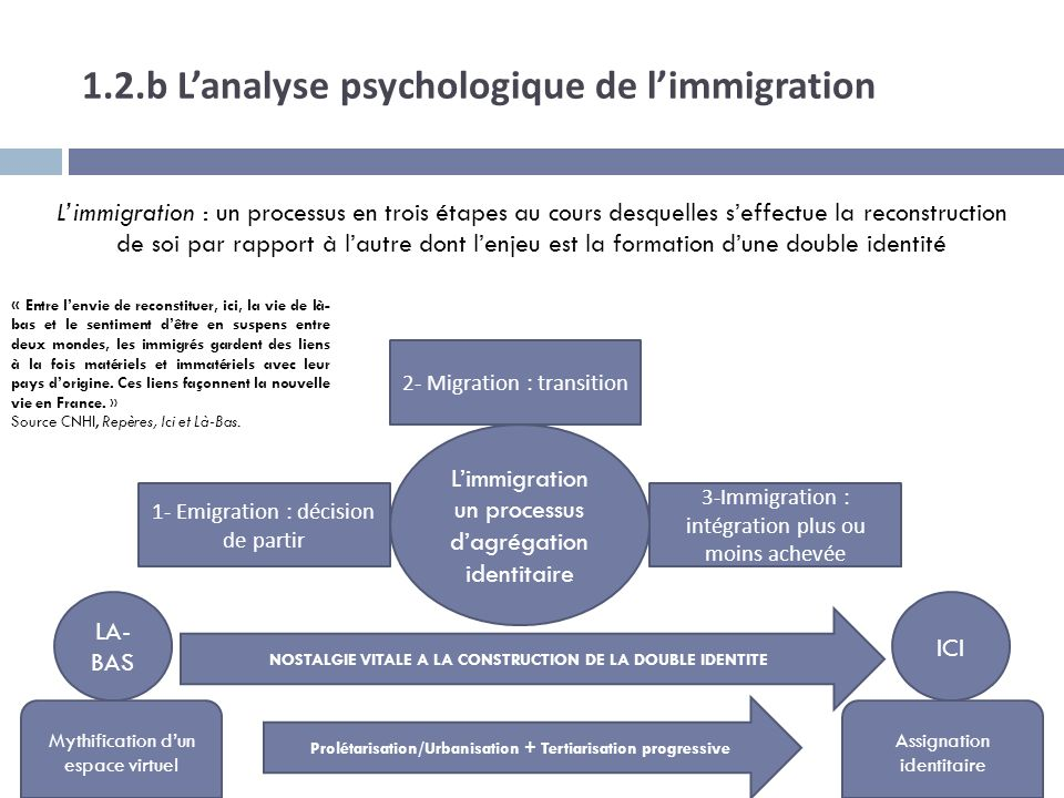 1.2.b L'analyse psychologique de l'immigration