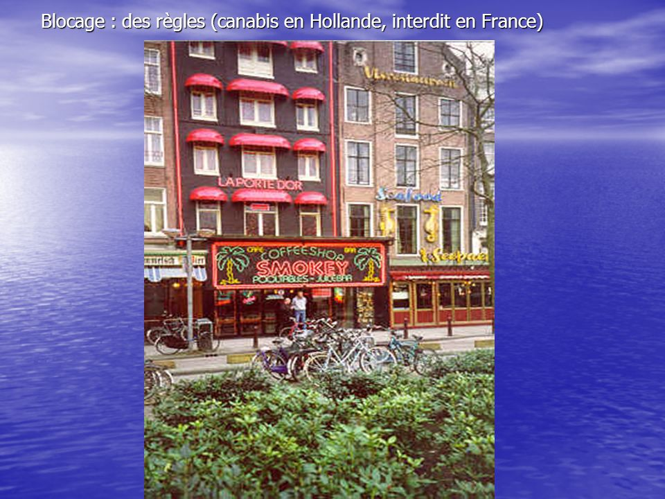 Blocage : des règles (canabis en Hollande, interdit en France)