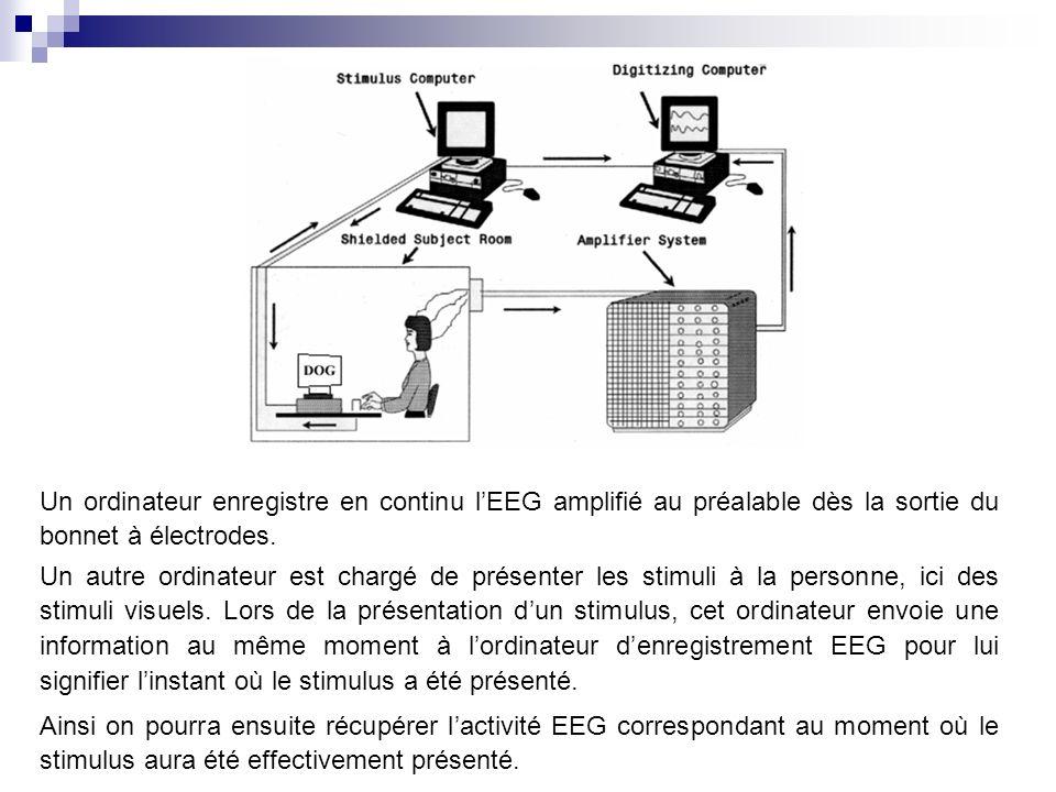 Un ordinateur enregistre en continu l'EEG amplifié au préalable dès la sortie du bonnet à électrodes.