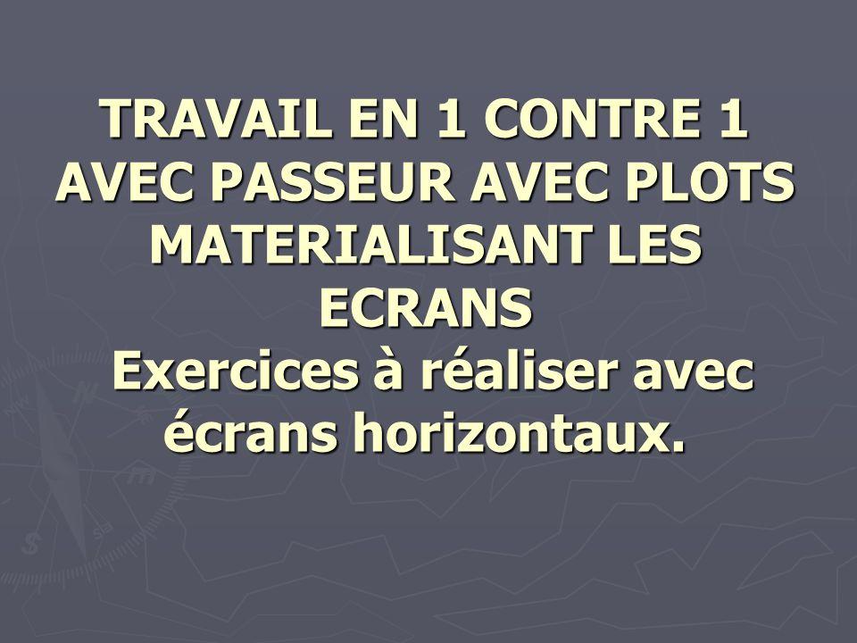 TRAVAIL EN 1 CONTRE 1 AVEC PASSEUR AVEC PLOTS MATERIALISANT LES ECRANS Exercices à réaliser avec écrans horizontaux.