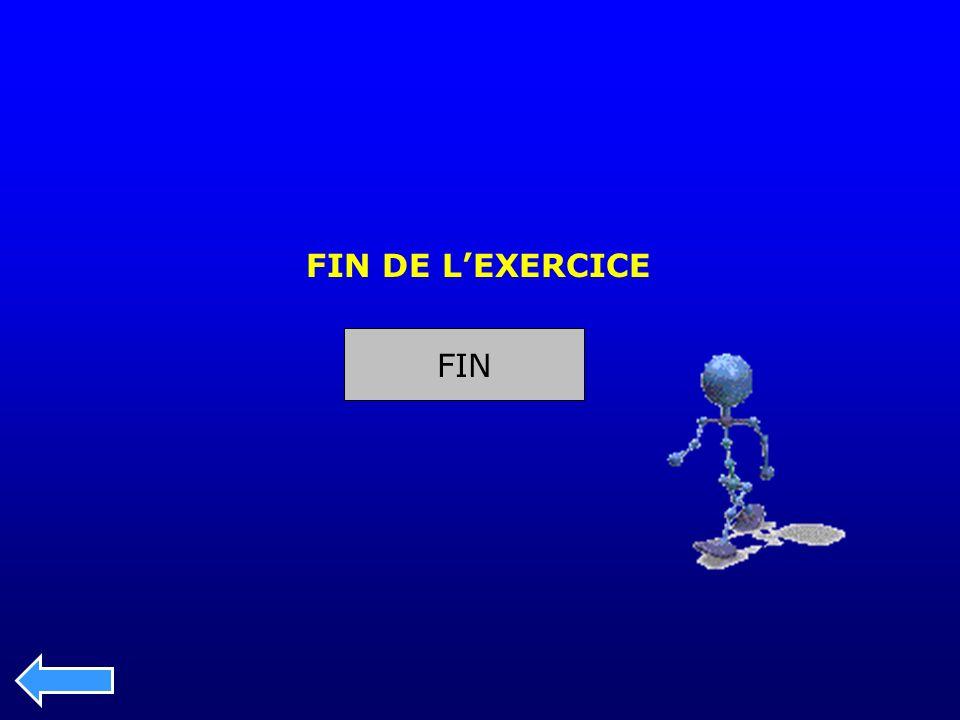 FIN DE L'EXERCICE FIN